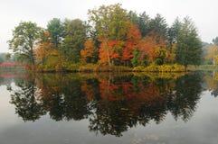 秋天叶子反映 图库摄影