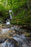 秋天叶子和流动的小河 图库摄影