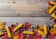 秋天叶子和玉米在桌上 免版税库存照片