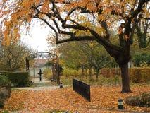 秋天叶子在公园 库存照片