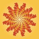 秋天叶子成螺旋形 库存图片