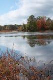 秋天叶子或叶子在树在老路旁水果摊附近与蓝天 免版税库存照片