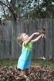 秋天叶子投掷 图库摄影