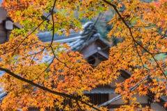 秋天叶子有屋顶房子背景在Korankei,爱知, Ja 免版税库存图片