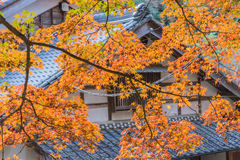 秋天叶子有屋顶房子背景在Korankei,爱知, Ja 免版税库存照片