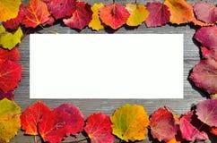 秋天叶子框架  免版税库存图片