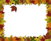秋天叶子框架 免版税库存照片