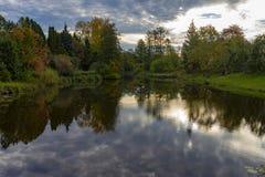 秋天叶子熔铸在镇静水的反射 免版税库存照片