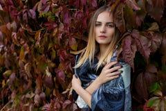 秋天叶子的美丽的女孩通过在一个晴朗的下午的城市街道走在外套和一件温暖的夹克 免版税图库摄影