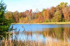 秋天叶子的颜色在山池塘反射 免版税图库摄影