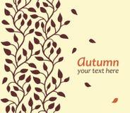秋天叶子看板卡 库存图片