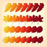 秋天叶子颜色样片 秋天季节概念 平的传染媒介例证 免版税库存图片