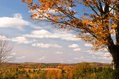 秋天叶子风景的缅因 库存图片