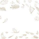 秋天叶子骨骼秋天设计模板 库存照片