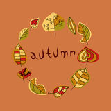 秋天叶子,在回合的集合 免版税库存照片