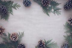 秋天和冬天圣诞节假日贺卡的平的位置构成 杉木锥体和金钟柏分支在牛皮纸  免版税库存照片
