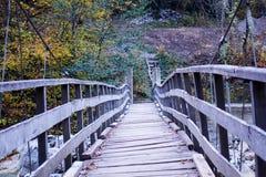 秋天和森林、五颜六色的树和叶子,瀑布 免版税库存图片
