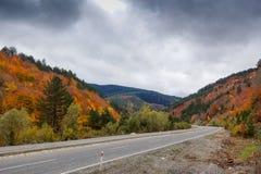 秋天和森林、五颜六色的树和叶子,瀑布 免版税图库摄影