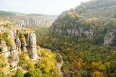 秋天和森林、五颜六色的树和叶子,瀑布 图库摄影