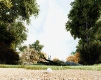 秋天和球 图库摄影