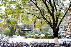 秋天和雪 库存照片