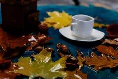 秋天咖啡 免版税库存图片