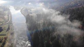 秋天喀尔巴阡山脉的横向山 河、小山和具球果森林倾斜的 早晨 股票录像
