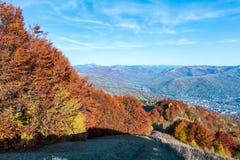 秋天喀尔巴阡山脉,拉希夫,乌克兰 免版税库存照片