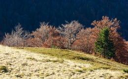秋天喀尔巴阡山脉的视图 图库摄影