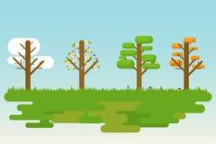 秋天四rnwinter季节春天夏天结构树 免版税库存照片