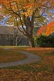 秋天回到叶子围场 库存图片