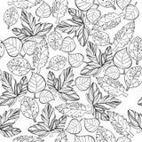秋天图表的例证传统化无缝的样式 背景的乱画设计 槭树自然画的叶子  免版税库存照片