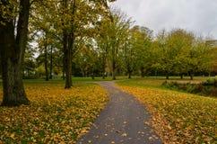 秋天在一个公园在阿姆斯特丹 免版税图库摄影