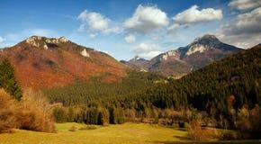 秋天在一个国家公园Mala Fatra 免版税库存图片