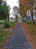 秋天在一个小镇 库存照片