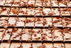 秋天在一个木屋顶的下落的叶子 库存图片