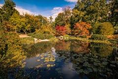 秋天在世田谷区公园 免版税库存照片