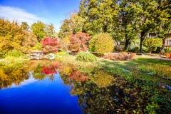 秋天在世田谷区公园 库存图片