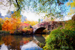 秋天在中央公园,纽约 图库摄影