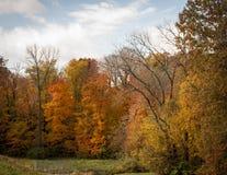 秋天在中西部 库存图片