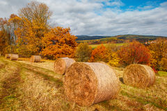 秋天在乡下 库存照片