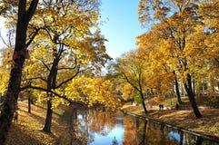 秋天在公园在里加 库存照片