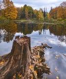 秋天在公园 图库摄影