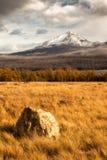 秋天在冰川国家公园,蒙大拿,美国 免版税库存图片