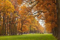 秋天在凯瑟琳公园在圣Petersb附近的Tsarskoye Selo, 免版税库存图片