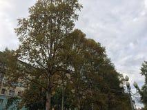 秋天在北部城市 免版税库存图片