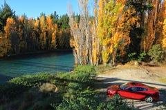 秋天在南岛新西兰 免版税图库摄影