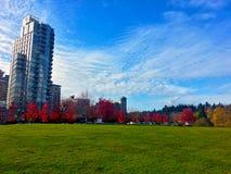 秋天在史丹利公园 库存照片