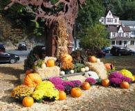 秋天在困空心纽约 免版税库存照片