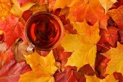 秋天在土气桌上的槭树叶子 库存图片